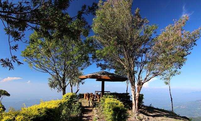 Wybierz się w regenerującą siły podróż do Sri Lanki
